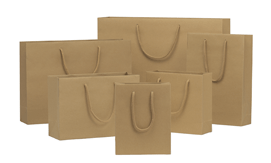 Brown Kraft Rope Handle Paper Bags