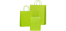 Coloured Twisted Handle FSC® Paper Bags
