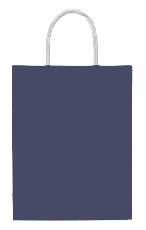3fd1677aff Coloured Twisted Handle FSC® Paper Bags from Paper Bag Co